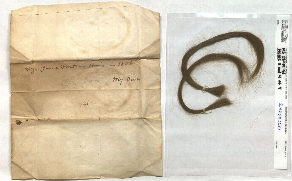 Image of a lock of Jane Porter's hair