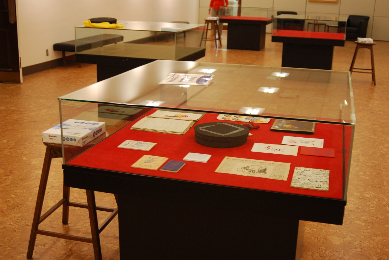 Photograph of initial layout of materials in the case