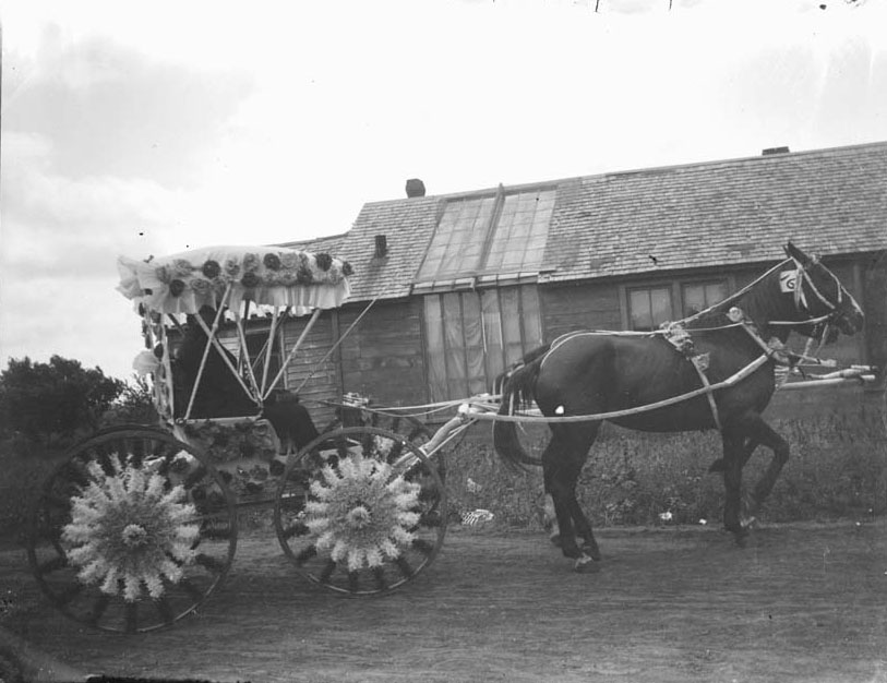 Photograph of a buggy decorated for the Fourth of July, 1898