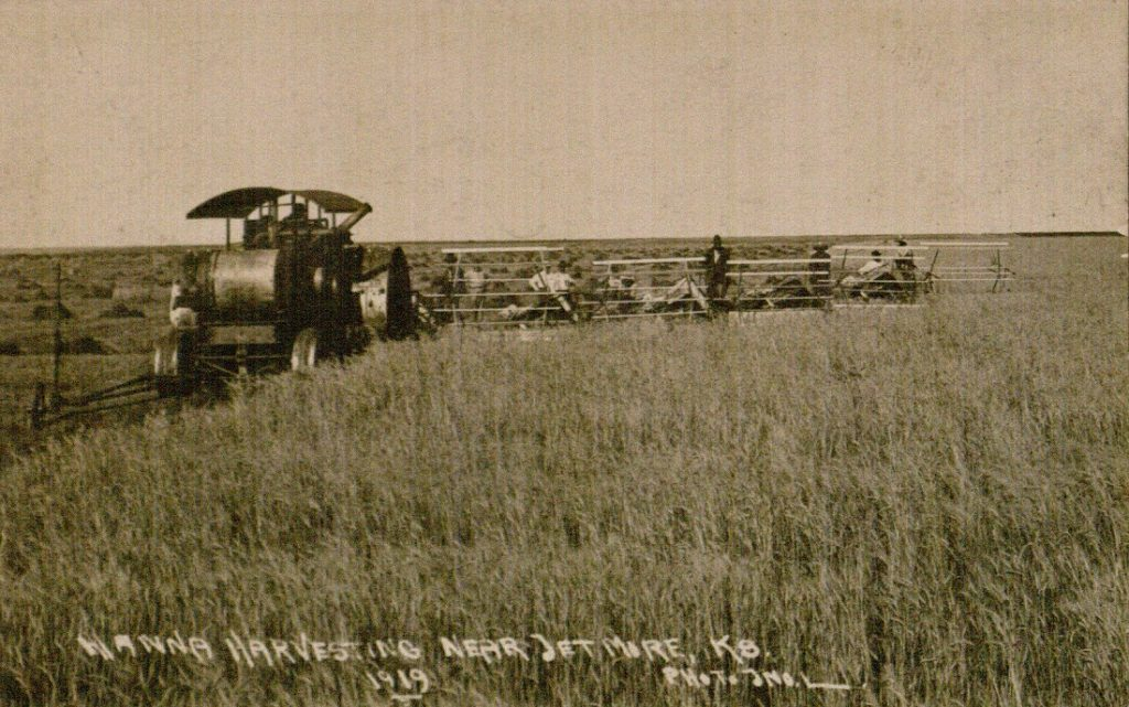 Photograph of a wheat harvest wheat near Jetmore, Kansas, 1919