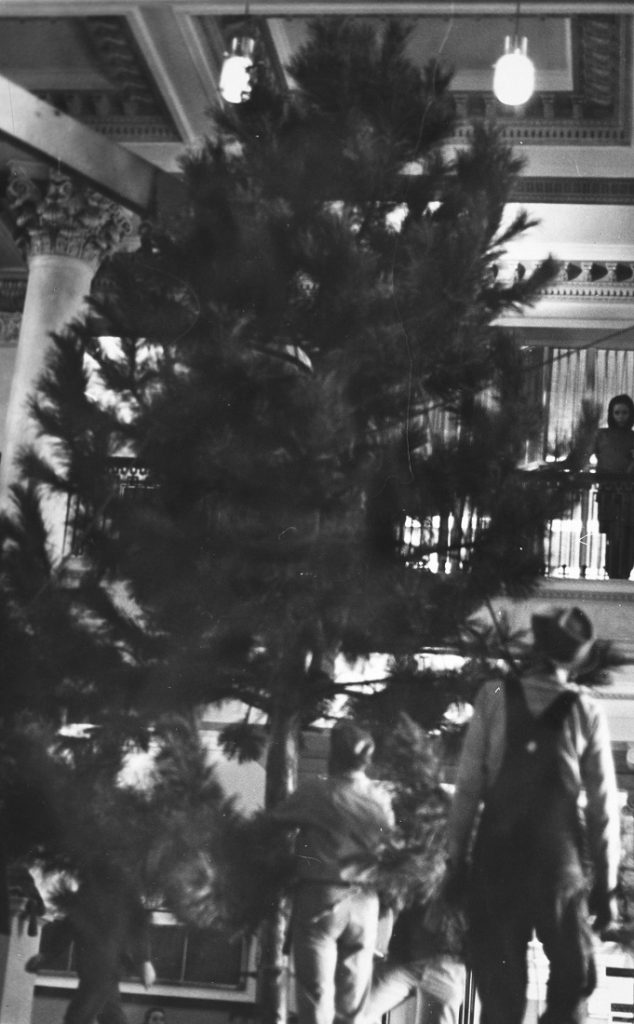 Photograph of the Chancellor's Christmas tree in Strong Hall, 1968
