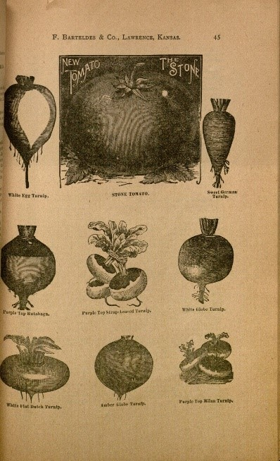 Page from the Kansas Seed House catalog, 1897