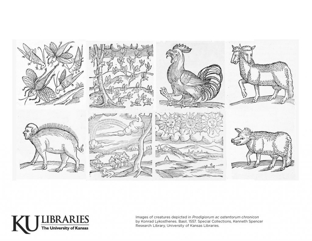 Spencer Research Library image in the KU Libraries coloring book, 2020