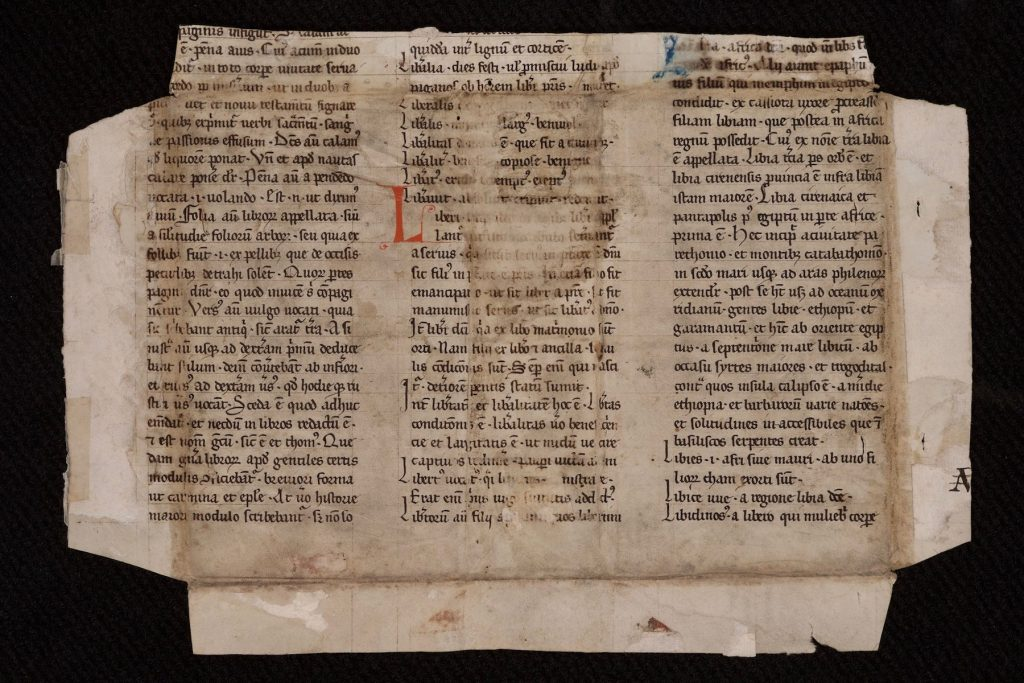 Image of a manuscript fragment (recto) possibly from Papias the Lombard's Elementarium doctrinae rudimentum [Elementary Introduction to Learning]. France? Netherlands? 13th century? The fragment had been repurposed as the cover of a codex.