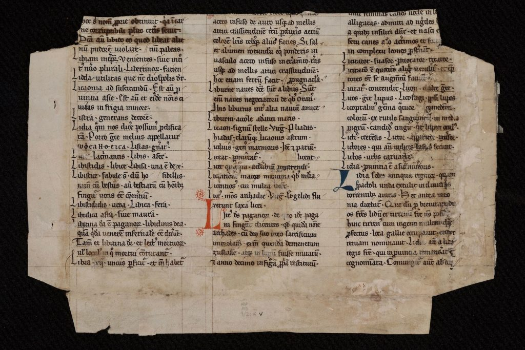 Image of a manuscript fragment (verso) possibly from Papias the Lombard's Elementarium doctrinae rudimentum [Elementary Introduction to Learning]. France? Netherlands? 13th century? The fragment had been repurposed as the cover of a codex.