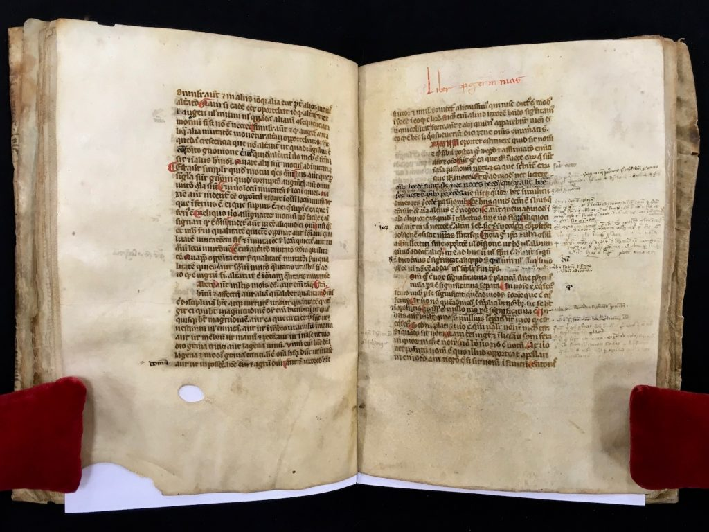 A sample opening from MS C189, displaying the end of Porphyry's Isagoge on folio 18v and the beginning of Aristotle's Perihermenias on folio 19r.