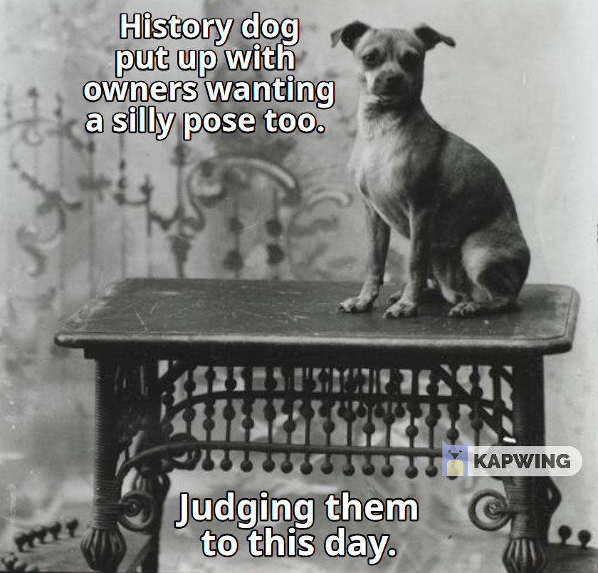 Meme created from a photograph of Ziegler's dog, 1897