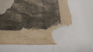 The progression of filling the loss with wet paper pulp.