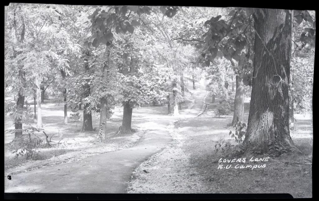"Photograph of ""Lover's Lane"" in Marvin Grove, 1948"