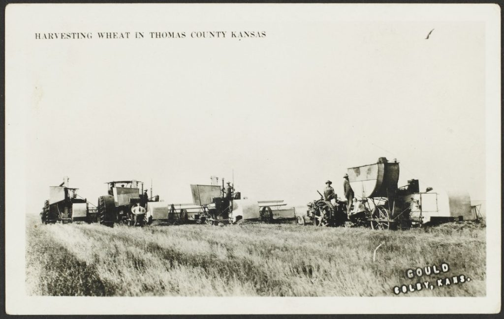 Black-and-white photograph of Men and horse-drawn harvesting machinery in a wheat field.